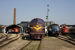 From right to left: Regionstog MX 42, DSB ME 1524, DSB Jernbanemuseet MX 1001, Altmark Rail MY 1149, CFL Cargo MY 1146 at Odense DSB Jernbanemuseet on 6 September 2014.