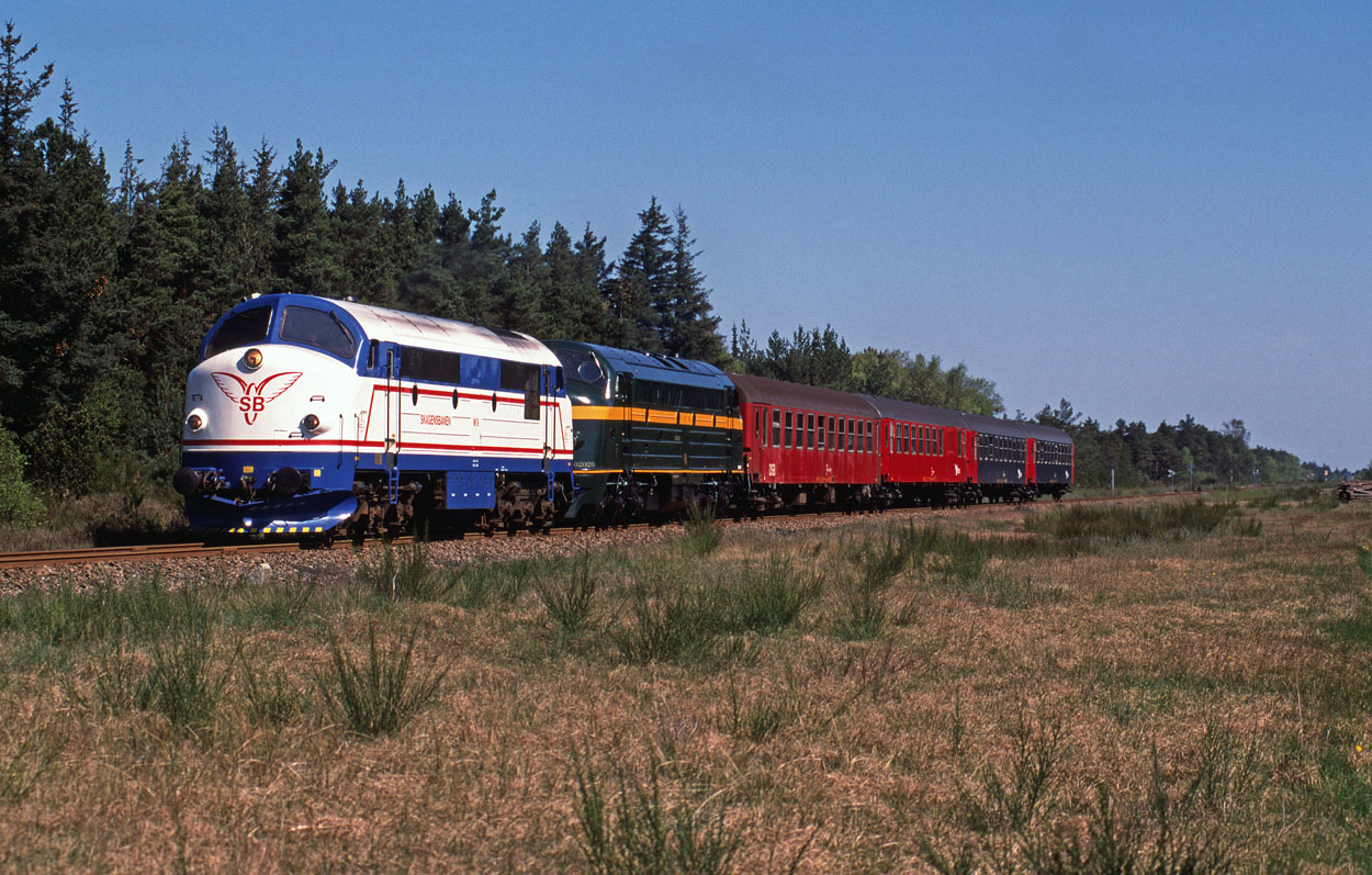 Skagensbanen M 9 and TSP 202.020 provide the traction for a four DSB coach special from Skagen to Frederikshavn at Bunken on 15 May 1999.