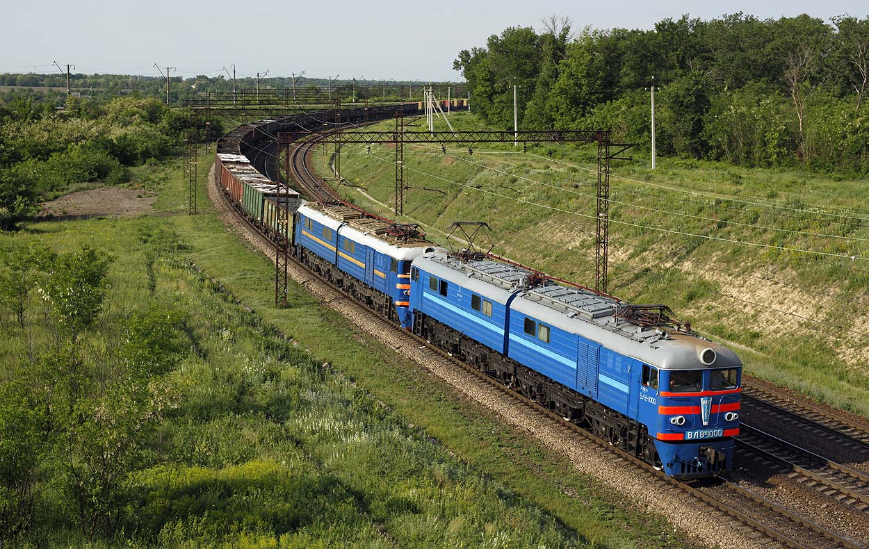 One of the highlights of the trip: both blue livered UZ WL8m-1000 and UZ WL8-941 haul a freight train from Dniprodzerzhynsk to Dnipropetrovsk near 178 KM station on 21 May 2013.